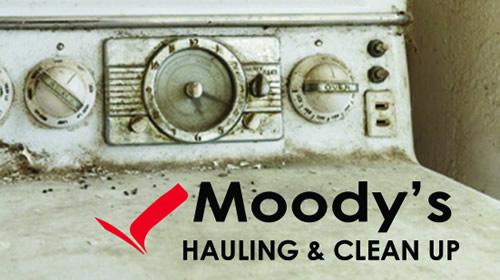 Moody's Junk Hauling - Case Study 2